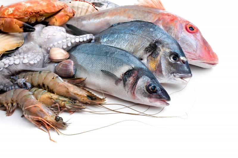 مركزات علف سمك 45% بروتين